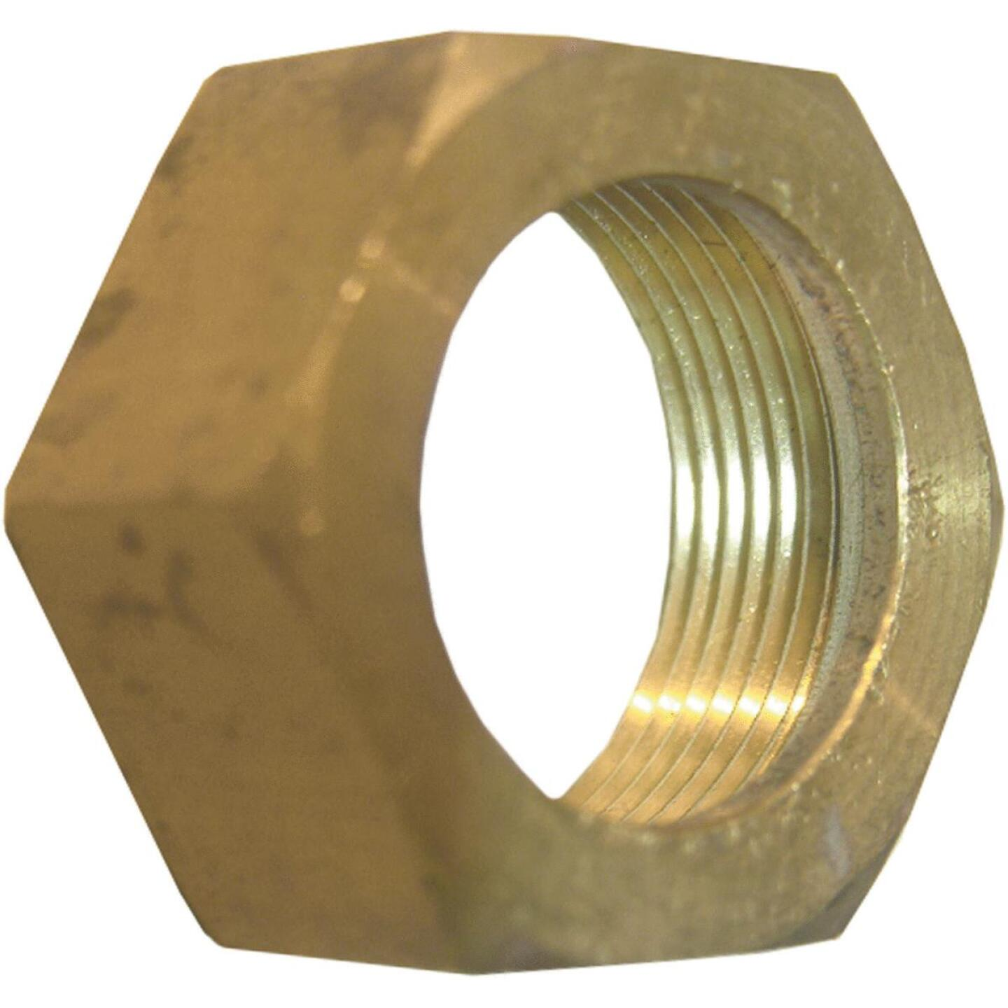 Lasco 3/8 In. Compression Nut and Sleeve Image 1