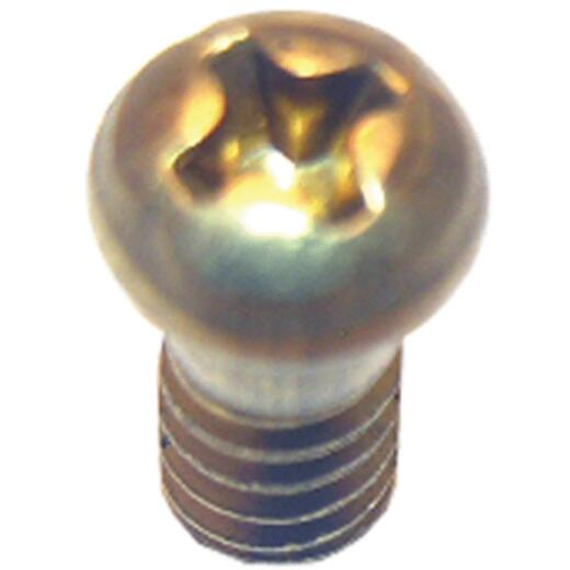 Lasco Round Head 3/8 In. #10 Faucet Screw