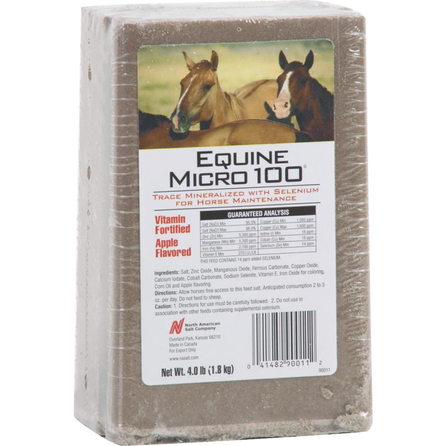 American Stockman Equine Micro 100 4 Lb. Apple Flavored Horse Block Image 1