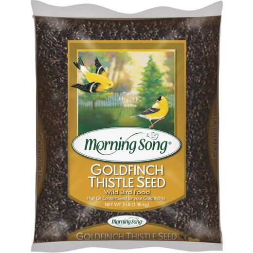 Morning Song 3 Lb. Nyjer Seed Wild Goldfinch Food